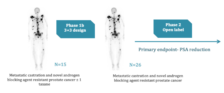 Veru-111 Development Plan